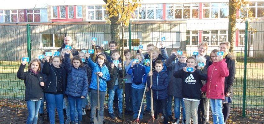 Baumpflanzaktion An Der Kreuzschule